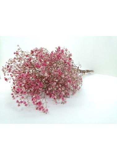 Kuru Çiçek Deposu Kuru Çiçek 1.Kalite Şoklanmış Dökülmeyen Pembe Cipso Demeti Pembe